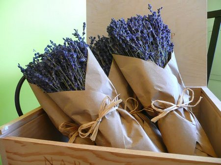 Domestic Use Of Dried Lavender Flowers Www Tidyhouse Info