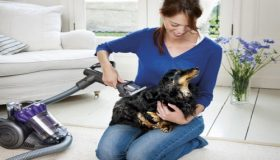 Cleaning Pet Hair From Your Home