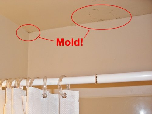 Bathroom Cleaning How To Stop Bathroom Mold