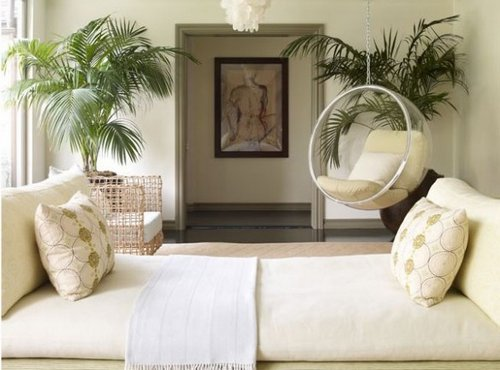 Indoor Plants – Important Part Of Interior Design