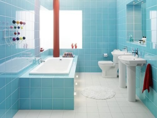 Bathroom Cleaning Guide