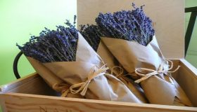 Domestic Use Of Dried Lavender Flowers