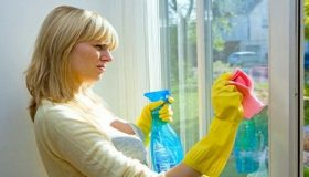 Windows Cleaning Products