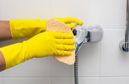 limescale-cleaning