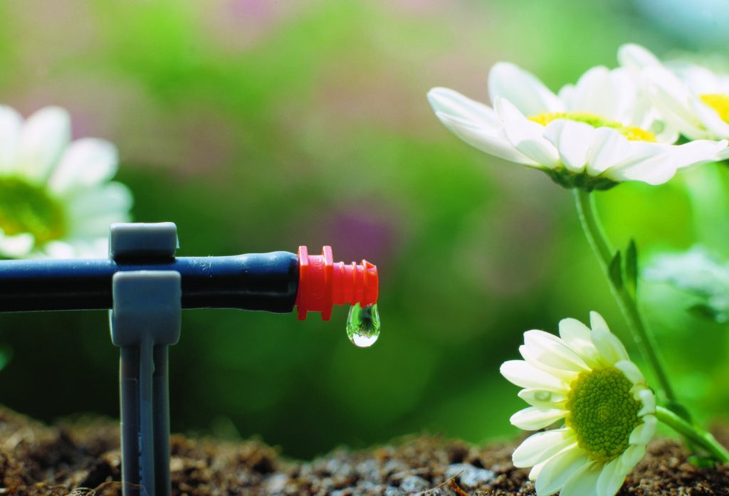 How To Save Water Outdoors?