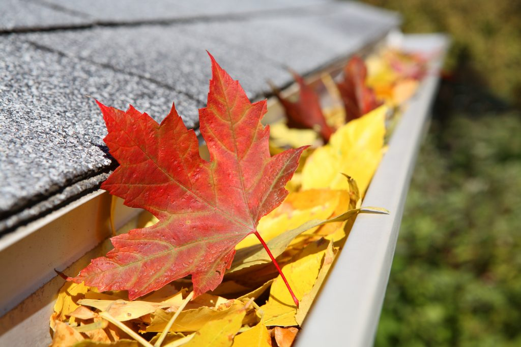 Home Maintenance Projects For The Fall Season